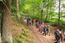 meulenwaldwanderung_2.JPG