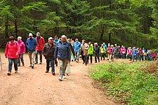 Meulenwaldwanderung.JPG